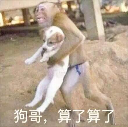 狗哥表情包