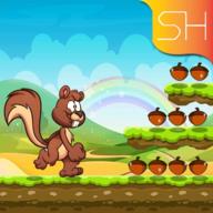 愤怒的松鼠丛林冒险